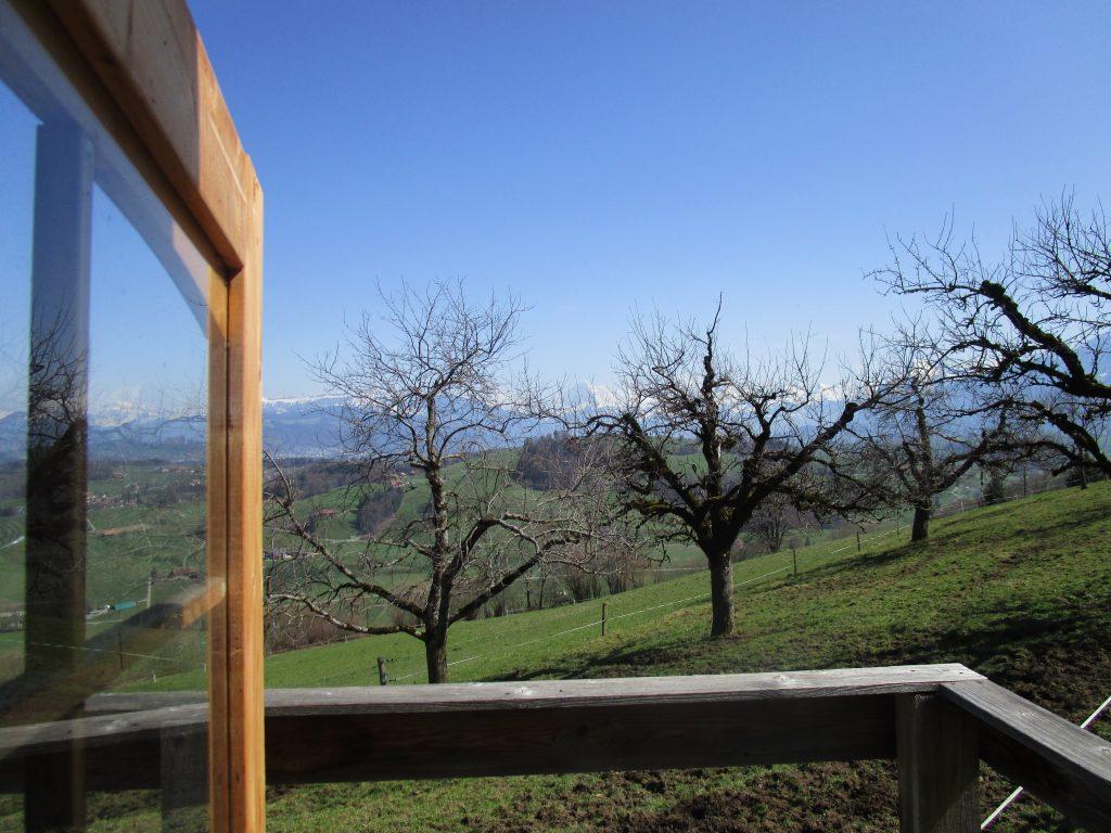 Aussicht vom Pilgerhäusschen auf den Hochstammobstgarten und die Alpen